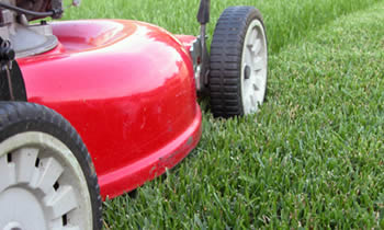 Lawn Care in Troy NY Lawn Care Services in Troy NY Quality Lawn Care in Troy NY